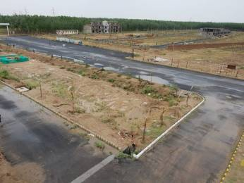 1800 sqft, Plot in Bajwa Sunny Enclave Sector 124 Mohali, Mohali at Rs. 36.8000 Lacs