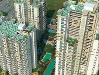 1285 sqft, 2 bhk Apartment in Cosmos Shivalik Homes UPSIDC Surajpur Site, Greater Noida at Rs. 10000