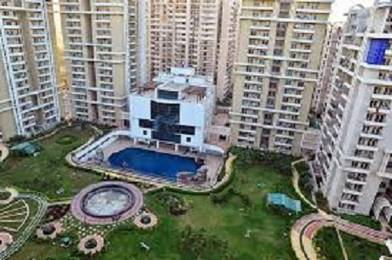1970 sqft, 3 bhk Apartment in Purvanchal Royal City CHI 5, Greater Noida at Rs. 68.9500 Lacs
