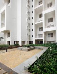 993 sqft, 2 bhk Apartment in Rohan Leher Baner, Pune at Rs. 70.0000 Lacs