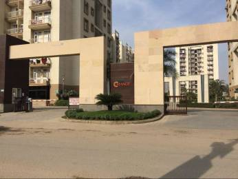 1137 sqft, 3 bhk Apartment in Tulip Orange Sector 70, Gurgaon at Rs. 21500