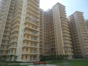 1250 sqft, 2 bhk Apartment in GPL Eden Heights Sector 70, Gurgaon at Rs. 25000