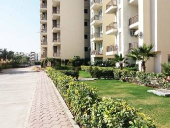 1175 sqft, 2 bhk Apartment in Koshda Mandakini Vrindavan, Mathura at Rs. 40.0000 Lacs