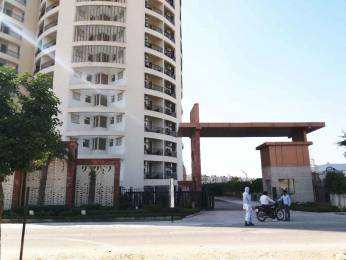 1550 sqft, 3 bhk Apartment in Koshda Mandakini Vrindavan, Mathura at Rs. 52.0000 Lacs