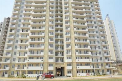 2764 sqft, 4 bhk Apartment in Corona Optus Sector 37C, Gurgaon at Rs. 1.1500 Cr