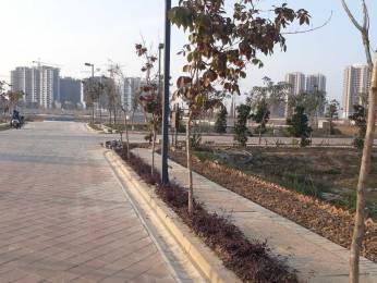 303 sqft, Plot in BPTP Amstoria Lutyens Plots Sector 102, Gurgaon at Rs. 1.6900 Cr