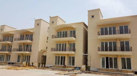2727 sqft, 3 bhk BuilderFloor in BPTP Amstoria Country Floor Sector 102, Gurgaon at Rs. 1.2900 Cr
