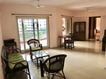 1110 sqft, 2 bhk Apartment in Pride Purple Sapphire Park Wakad, Pune at Rs. 20000