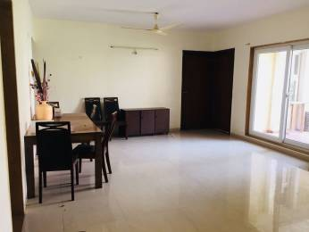 1550 sqft, 3 bhk Apartment in Pride Purple Sapphire Park Wakad, Pune at Rs. 23000