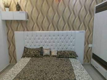 600 sqft, 1 bhk Apartment in Wisteria Nav City Sector 123 Mohali, Mohali at Rs. 13.9000 Lacs