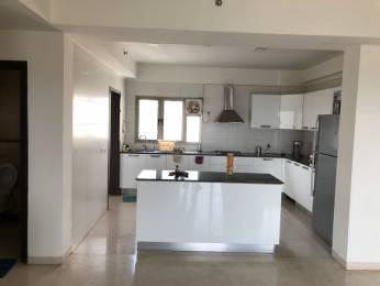 2974 sqft, 3 bhk Apartment in TATA Raisina Residency Sector 59, Gurgaon at Rs. 2.3000 Cr