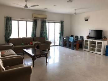 2974 sqft, 3 bhk Apartment in TATA Raisina Residency Sector 59, Gurgaon at Rs. 2.5000 Cr