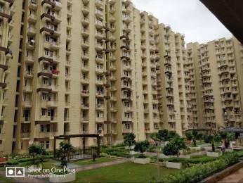 820 sqft, 2 bhk Apartment in Krish Aura Sector 18 Bhiwadi, Bhiwadi at Rs. 17.0000 Lacs