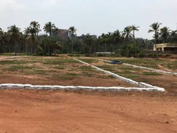 2177 sqft, Plot in Builder Project Kulshekar, Mangalore at Rs. 33.0000 Lacs
