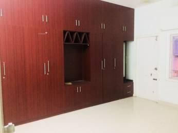 1100 sqft, 2 bhk Apartment in Builder Project Kadri, Mangalore at Rs. 15000