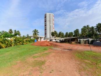 1215 sqft, 2 bhk Apartment in Builder Project Pumpwell, Mangalore at Rs. 18000