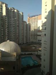 455 sqft, 1 bhk Apartment in Builder Project Sector-143 Noida, Noida at Rs. 12800