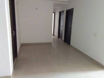 1415 sqft, 3 bhk Apartment in 3C Lotus Zing Sector 168, Noida at Rs. 13000