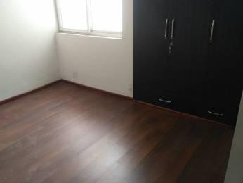 915 sqft, 2 bhk Apartment in 3C Lotus Zing Sector 168, Noida at Rs. 10000