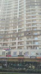 440 sqft, 1 bhk Apartment in Builder Project Sector 142, Noida at Rs. 13499