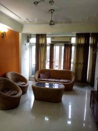 2050 sqft, 4 bhk Apartment in Builder Project Dwarka sec 6, Delhi at Rs. 35000