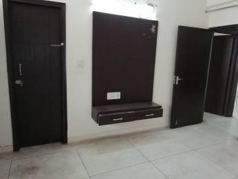 1250 sqft, 2 bhk Apartment in Builder LNT Flats Sector-18 Dwarka, Delhi at Rs. 20000