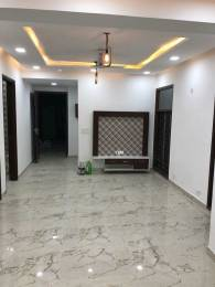 1850 sqft, 3 bhk BuilderFloor in Builder Project Dwarka New Delhi 110075, Delhi at Rs. 30000