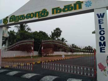 1200 sqft, Plot in Builder sri pragalath nagar Kayarambedu, Chennai at Rs. 15.0000 Lacs