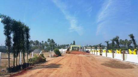 6750 sqft, Plot in Builder Project Bheemili Beach, Visakhapatnam at Rs. 23.0000 Lacs
