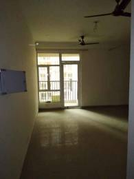 1420 sqft, 3 bhk Apartment in Builder Gaur city 2 11th avenue gaur city 2, Greater Noida at Rs. 9500