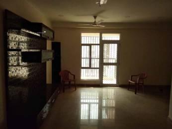 1900 sqft, 4 bhk Apartment in Gaursons India Ltd. Gaur City 2 11th Avenue Knowledge Park, Greater Noida at Rs. 12000