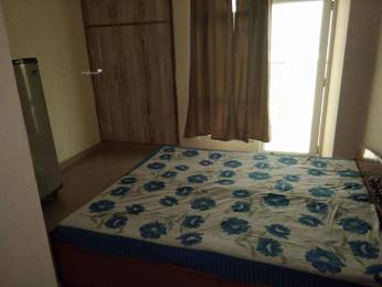 1205 sqft, 2 bhk Apartment in Gaursons 11th Avenue Sector 16C Noida Extension, Greater Noida at Rs. 12000