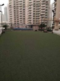 1010 sqft, 2 bhk Apartment in Builder gaursons 11th avenue Sector 16C Noida Extension, Greater Noida at Rs. 8500