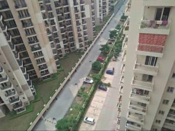 883 sqft, 2 bhk Apartment in Builder gaur city 2 11th avenue Gaur City Road, Noida at Rs. 8500