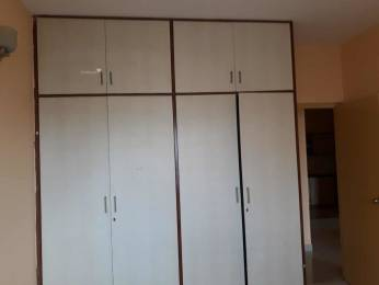1240 sqft, 2 bhk Apartment in Builder Project Ramamurthy Nagar, Bangalore at Rs. 16000