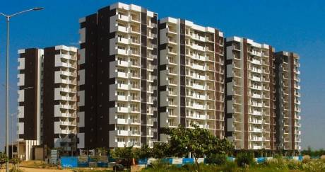 1164 sqft, 2 bhk Apartment in Janta Sky Gardens Sector 66, Mohali at Rs. 61.0000 Lacs