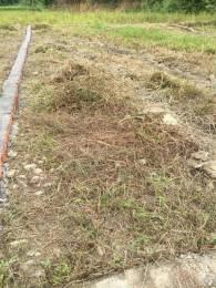 920 sqft, Plot in Builder sara hills Ghangora Road, Dehradun at Rs. 8.1776 Lacs