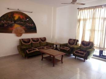 1050 sqft, 2 bhk Apartment in Builder Project sector 71, Mohali at Rs. 23000