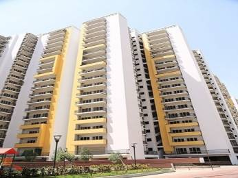 1590 sqft, 3 bhk Apartment in Panchsheel Greens Sector 16B Noida Extension, Greater Noida at Rs. 58.8300 Lacs