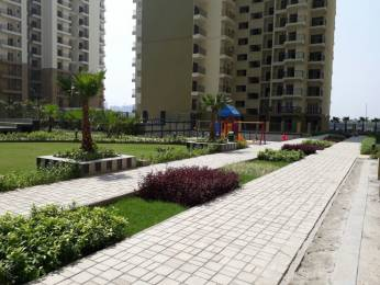 1100 sqft, 2 bhk Apartment in Trident Embassy Sector 1 Noida Extension, Greater Noida at Rs. 40.1500 Lacs