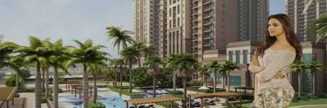 995 sqft, 2 bhk Apartment in Ace Divino Sector 1 Noida Extension, Greater Noida at Rs. 36.5000 Lacs