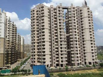 1075 sqft, 2 bhk Apartment in Express Zenith Sector 77, Noida at Rs. 55.6000 Lacs