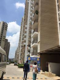 1765 sqft, 3 bhk Apartment in Express Zenith Sector 77, Noida at Rs. 91.7800 Lacs