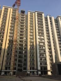 1310 sqft, 2 bhk Apartment in Panchsheel Pratishtha Sector 75, Noida at Rs. 71.5000 Lacs