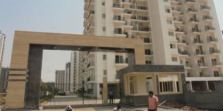 3500 sqft, 4 bhk Apartment in Maxblis Grand Kingston Sector 75, Noida at Rs. 2.6250 Cr