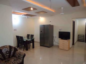 1200 sqft, 2 bhk Apartment in Builder janhvi Complex New Colony, Nagpur at Rs. 20000
