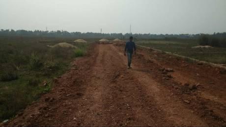 1500 sqft, Plot in Builder Project Pada Sahi Road, Bhubaneswar at Rs. 20.2500 Lacs