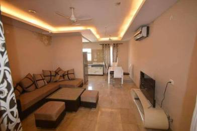 1300 sqft, 2 bhk Apartment in Builder rwa sector 19 noida Sector 19, Noida at Rs. 22000