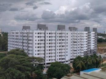 900 sqft, 3 bhk Apartment in Builder Plam Groovess Chandapura Anekal Road, Bangalore at Rs. 31.5060 Lacs