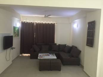 1075 sqft, 2 bhk Apartment in Today Homes Ridge Residency Sector 135, Noida at Rs. 5500
